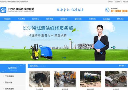 长沙鸿城清洁服务有限公司网站优化上线一个月排名骄人